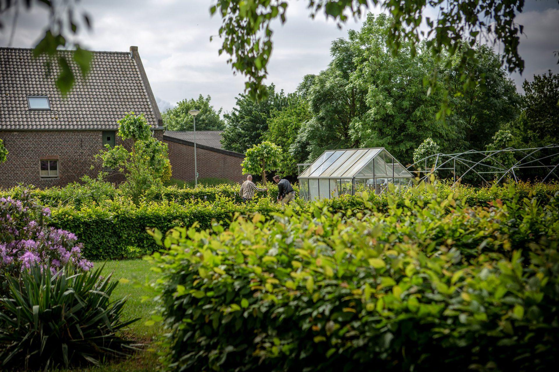 Middelhof-S20C009401.jpg